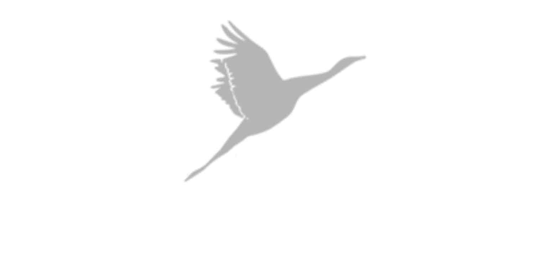 Goosehead Insurance – Jeremy White